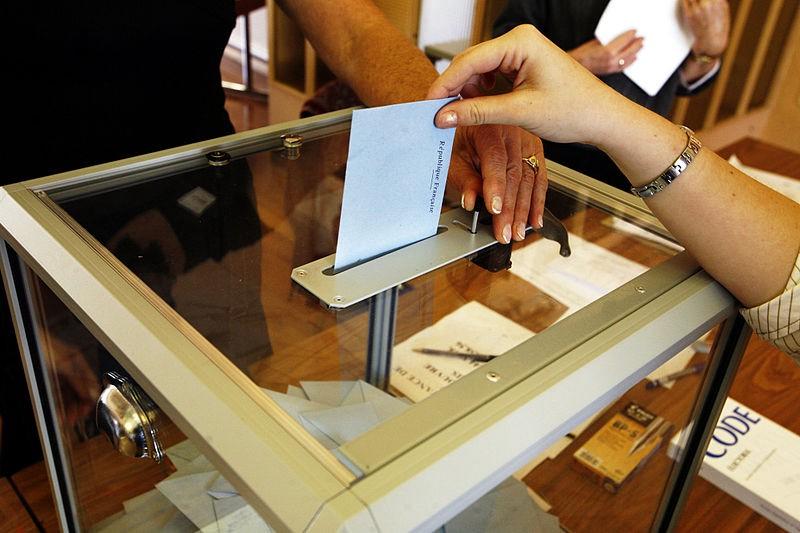 Première en France : un vote organisé «pour» ou «contre» le RIC