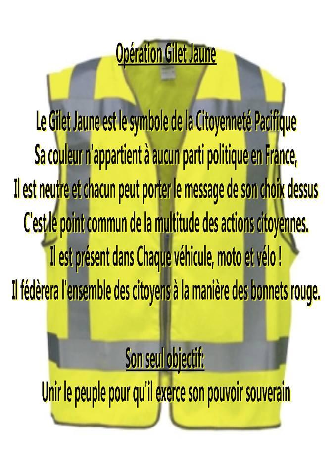 16 novembre 2015: Le Gilet Jaune est le symbole de la Citoyenneté Pacifique.  Sa couleur n'appartient à aucun parti politique en France, il est neutre et chacun peut se porter le message de son choix dessus. C'est le point commun de la multitude des actions citoyennes.  Son seul objectif: Unir le peuple pour qu'il exerce son pouvoir souverain.